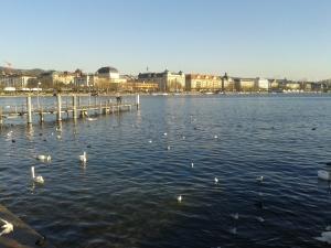 Zurich and Geneva 168