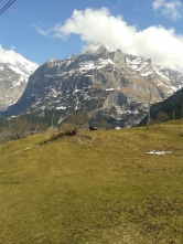More Suisse (interlaken) 231