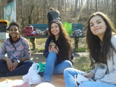 Birthday Picnic